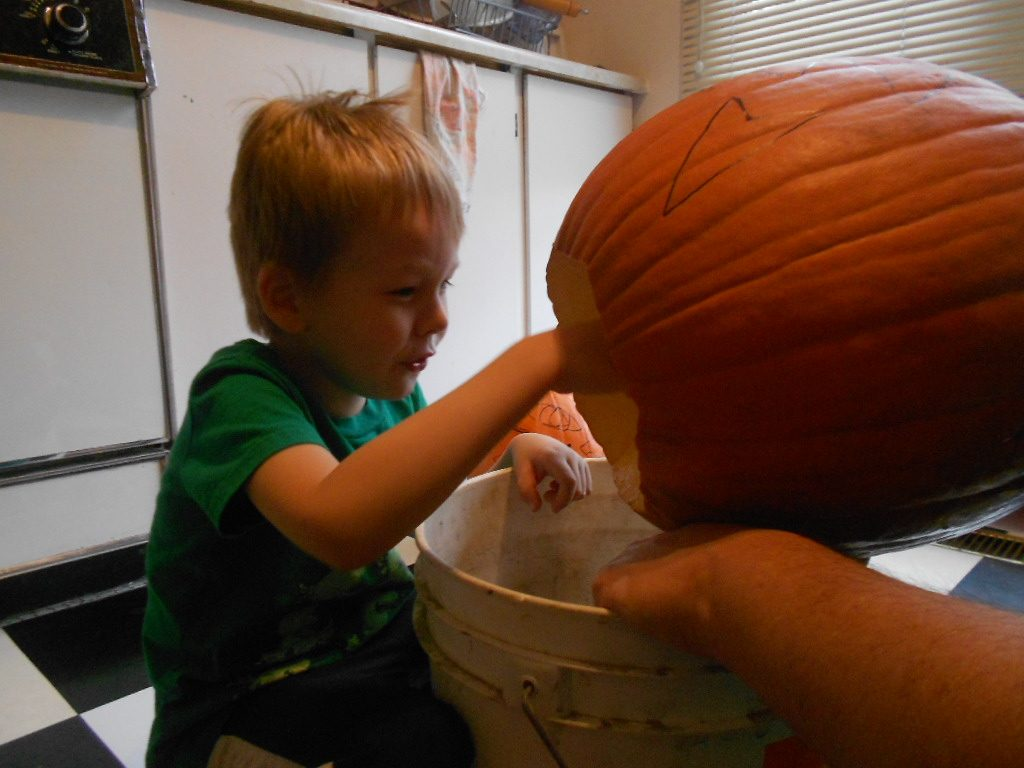 For Halloween 2014, we talked my son into Assisting us with preparing our pumpkins.